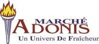 Groupe Adonis Inc
